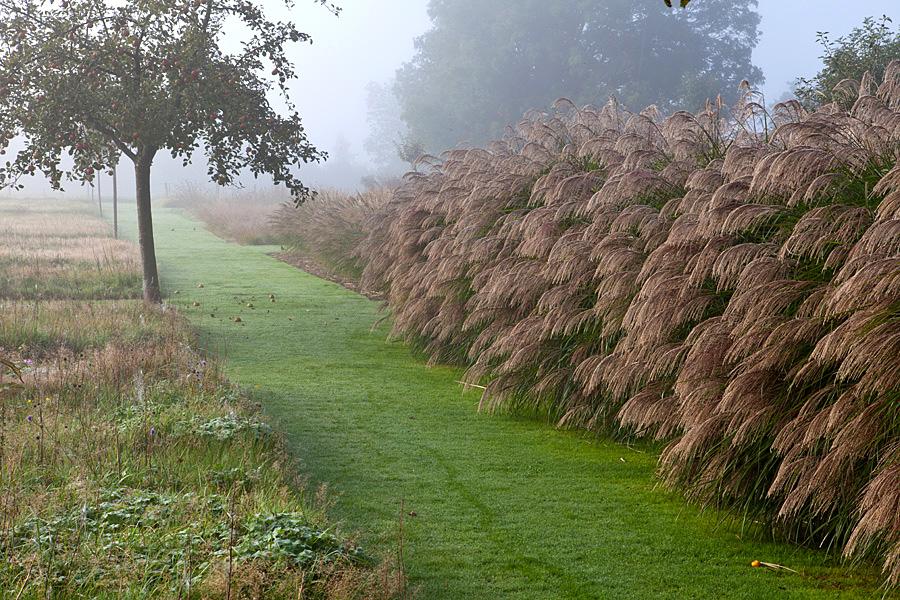 Le jardin plume automne autumn le jardin plume for Le jardin des plumes