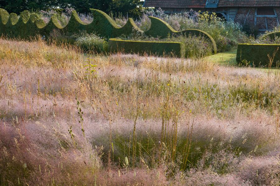 Le jardin plume t summer le jardin plume for Le jardin plume