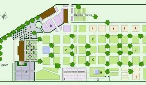plan du jardin / garden plan